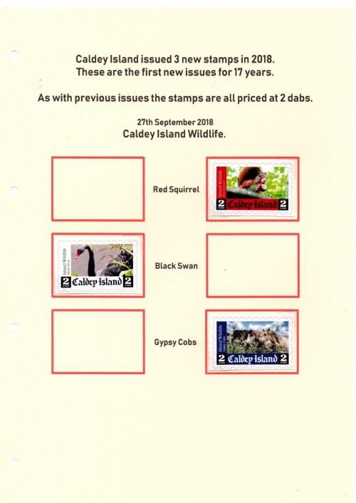 Caldey 5