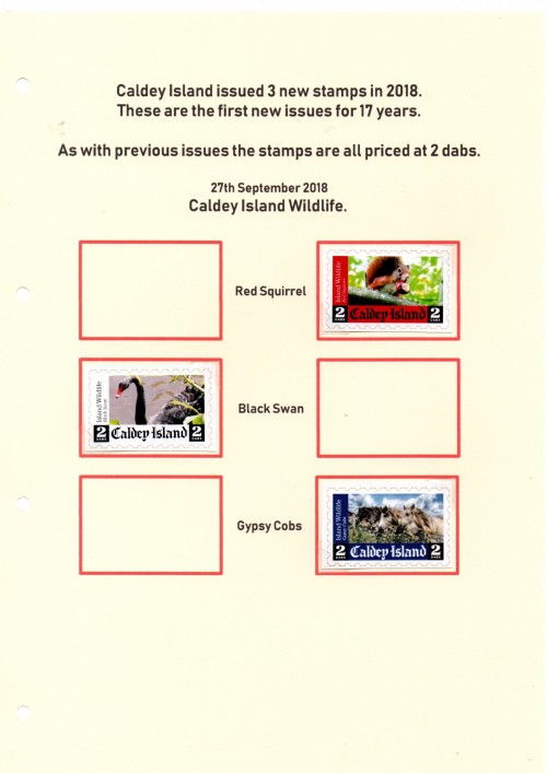 Caldey-5.jpg