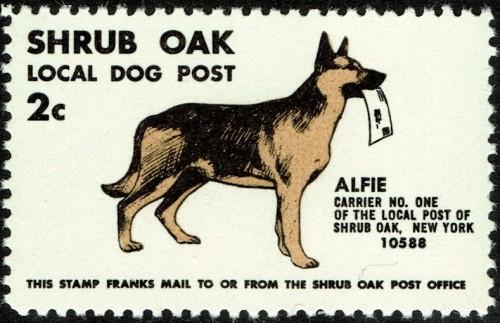Dog-Post.jpg