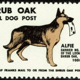 Dog-Post