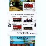 Guyana-B15
