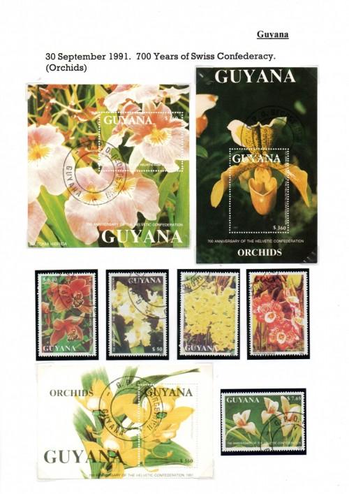 Guyana-B47.jpg