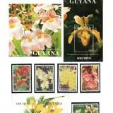 Guyana-B47