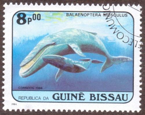 Guine-Bissau-stamp-598u.jpg