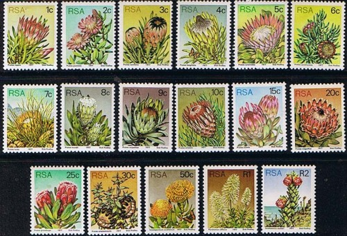south africa 1977 proteas and succulents set fine mint 9222 p