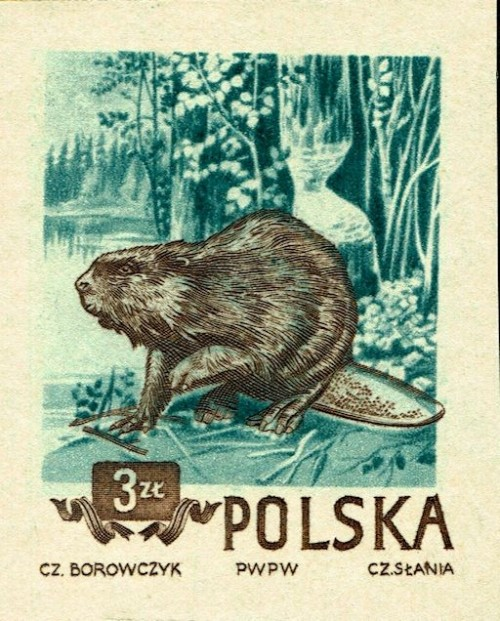 Poland-Scott-Nr-663-1954.jpg