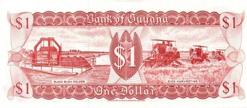 guyana-banknote-2.jpg