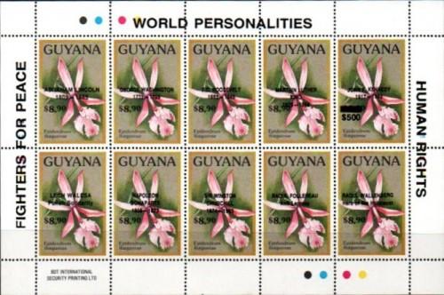guyana-bogus-3.jpg