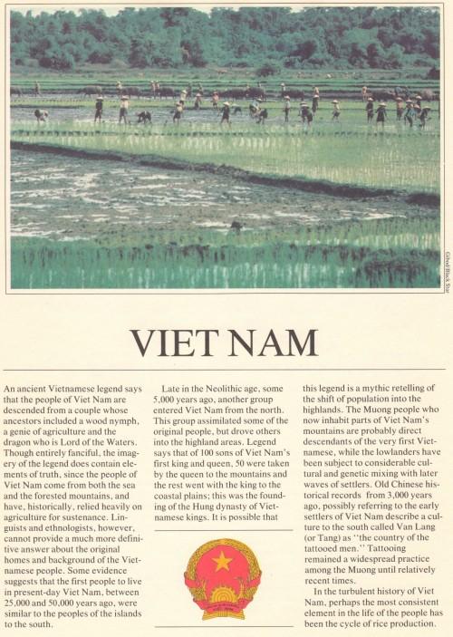 UFUN brn v1 Vietnam p2 50p