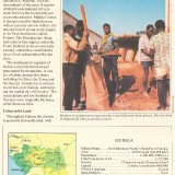 UFUN-brn-v1-Guinea-p3-50p