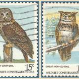 usa-owls