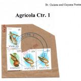 guyana-agricola-ctr-1