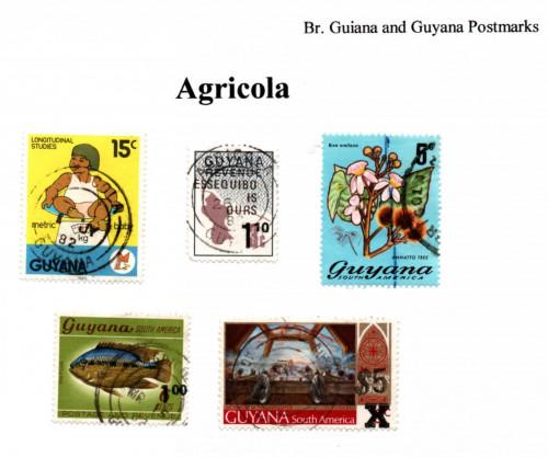 guyana-agricola.jpg