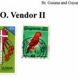 guyana-g.p.o.-vendor-II