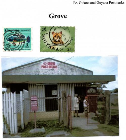 guyana grove