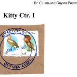 guyana-kitty-ctr.-1