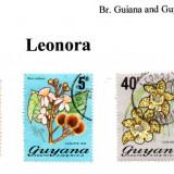 guyana-leonora