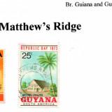 guyana-matthews-ridge