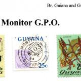 guyana-monitor-g.p.o