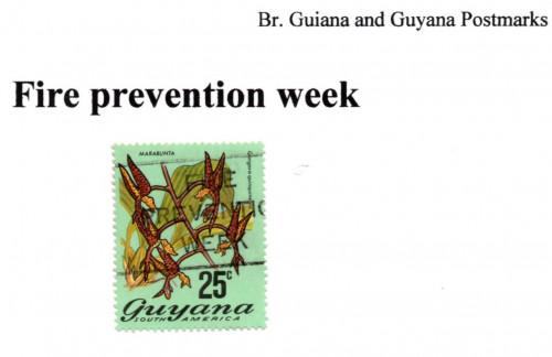 guyana-fire-prevention.jpg