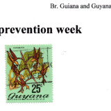 guyana-fire-prevention