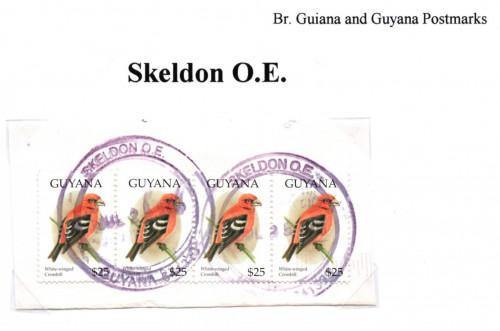 guyana-skeldon-o.e.jpg
