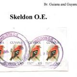 guyana-skeldon-o.e
