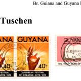 guyana-tuschen