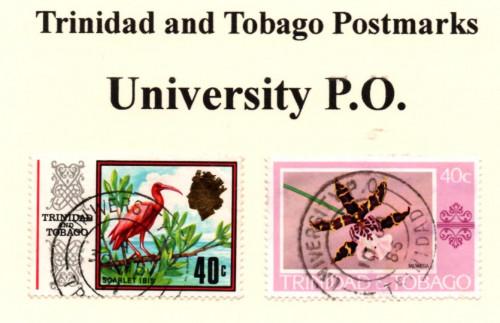t-ana-t-university-p.o..jpg