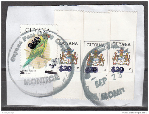 20-dollar-guyana-1.jpg