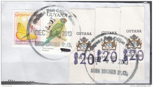 20-dollar-guyana-2.jpg