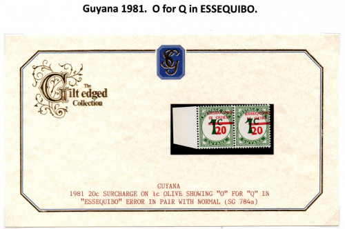 guyana-errors-3.jpg
