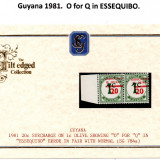 guyana-errors-3