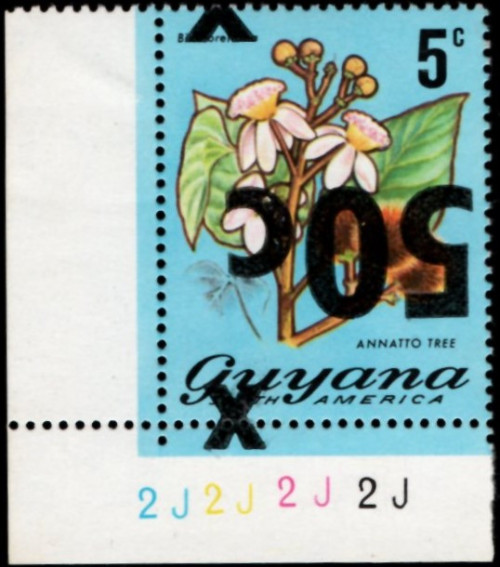 guyana-errors-5.jpg
