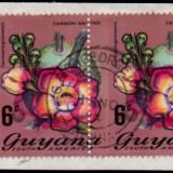 guyana-errors-7b