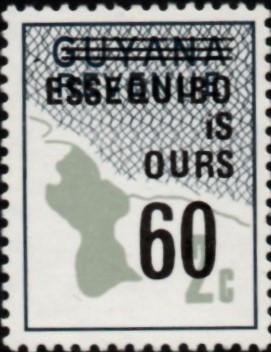 guyana errors 8