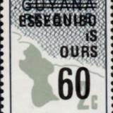 guyana-errors-8